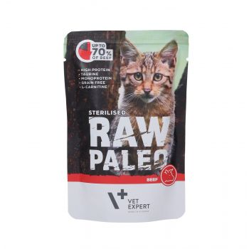 4T RAW PALEO CAT STERILISED BEEF MEAT 100G SASZETKA