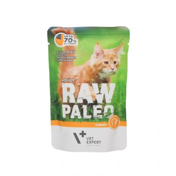 4T RAW PALEO CAT ADULT TURKEY MEAT 100G SASZETKA