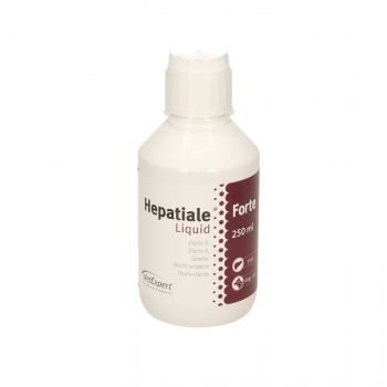HEPATIALE FORTE LIQUID 250 ML