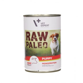 4T RAW PALEO DOG PUPPY BEEF MEAT 400G